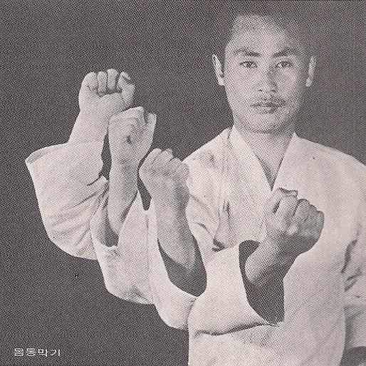 Posiciones de taekwondo con imagenes